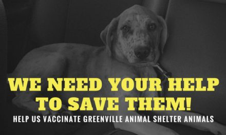 Greenville Animal Shelter Vaccine Fundraiser