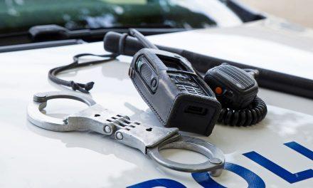 7 arrested – Greenville Police arrest report – April 10, 2017