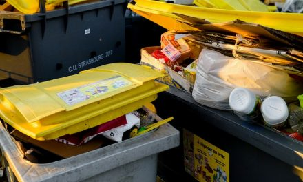 July 4 Holiday Trash and Recycling Schedule