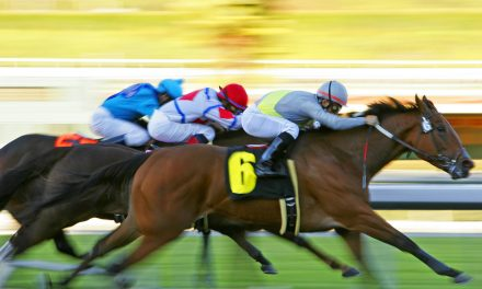 The ponies are running this weekend at Lone Star Park