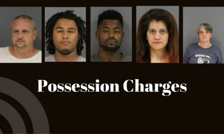 Five charges with possession
