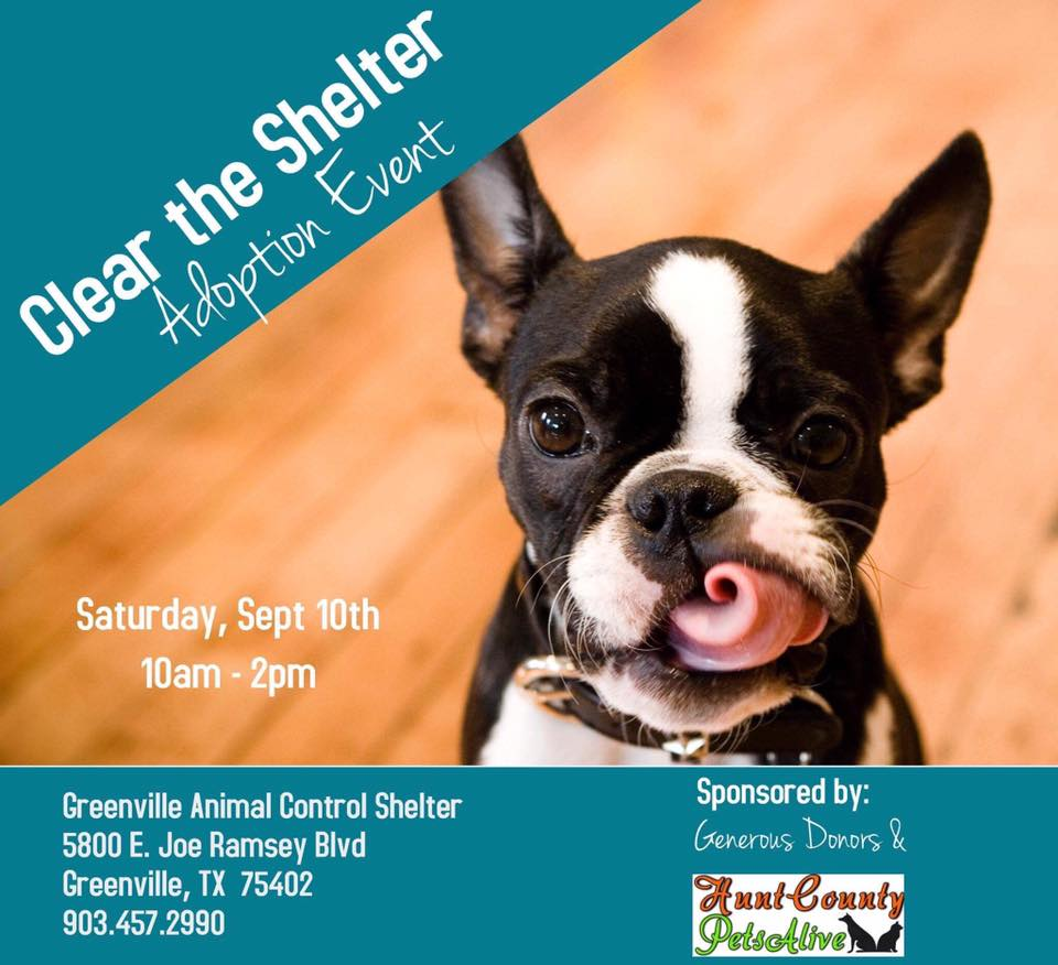 clear the shelter day set for september 10   all pet