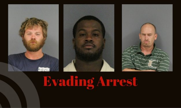 Three evade arrest