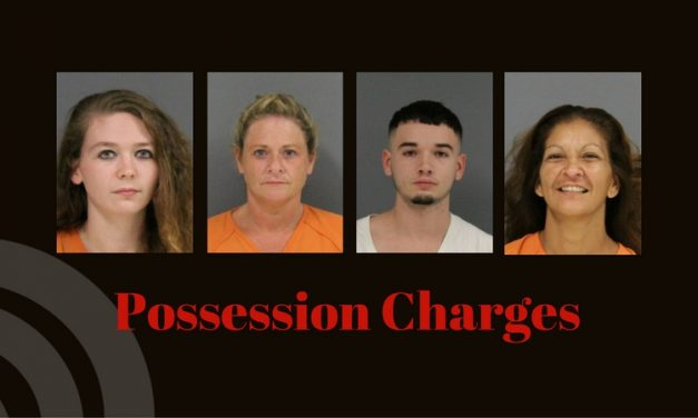 Possession charges lands five in jail