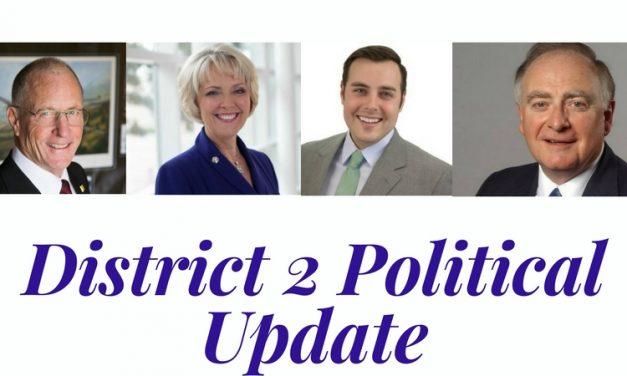 Burkett and Hall face off in 2018 Senate race – District 2 political update