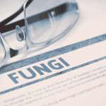 Fungicides – chemicals that kill fungi
