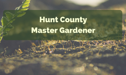 Poisonous holiday plants || Hunt County Master Gardener
