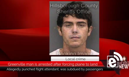 Local man is arrested after forcing plane to make emergency landing