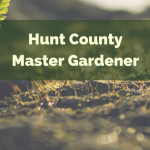 On the Grow: Garden Decor || Hunt County Master Gardener