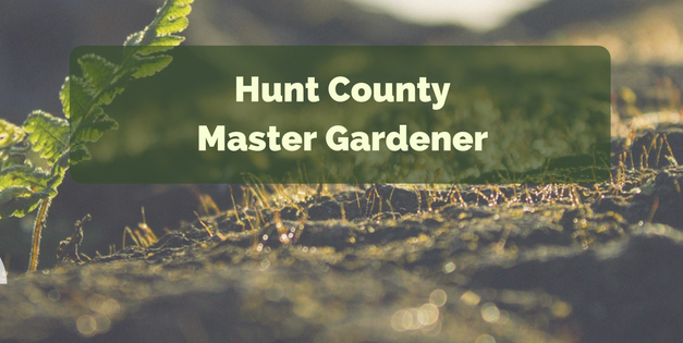 On the Grow: Planning this year's garden || Hunt County Master Gardener