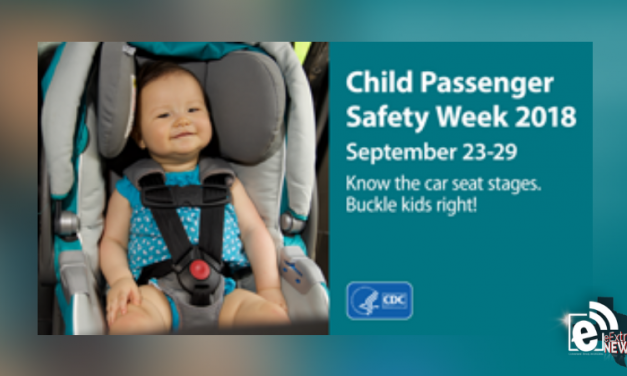 Child Passenger Safety Week is this week || Know what's appropriate