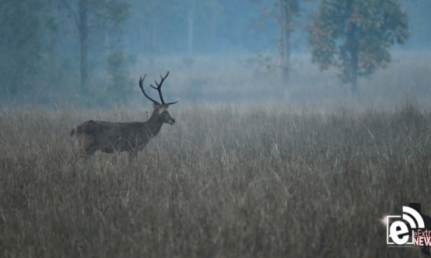 On your mark || General season for deer is about to start