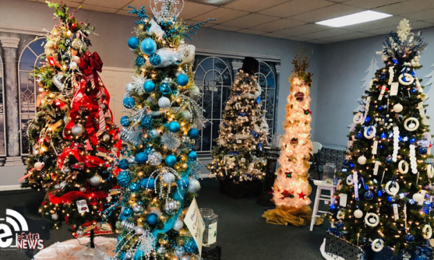 Festival of Trees promises to fill the area with the Christmas spirit