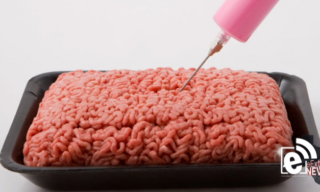 USDA gives the OK for 'pink slime' to be called ground beef
